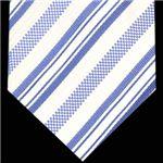 Ermenegildo Zegna (エルメネジルド ゼニア) ネクタイ N-ZEG-A00138 White系
