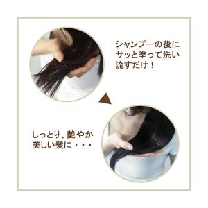 ヘナと椿のヘアパック ブラック