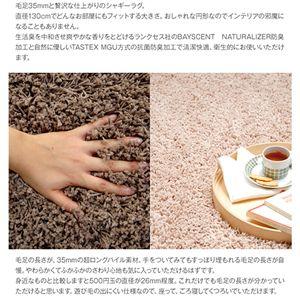 抗菌防臭機能付☆シャギーラグマット丸型 ブラウン