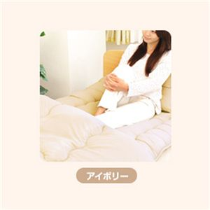 ピーチスキン加工 寝具3点 シングル【フローリング・床用】 アイボリー の詳細をみる