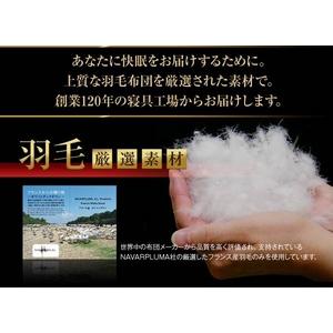 NAVARPLUMA社厳選 フランス産ホワイトダックダウン90% 羽毛掛布団 レギュラータイプ シングル ベージュ