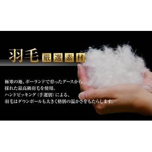 ポーランド産ハンドピックホワイトグースダウン95% 羽毛掛布団 ボリュームタイプ ダブル モカブラウン