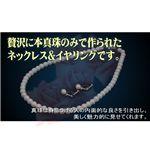 アコヤ真珠 パールネックレス・パールイヤリング セット 【本真珠】