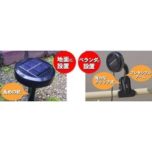 <ソーラー充電式>LEDイルミネーションライト(100灯)