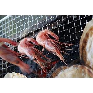 北海道BBQ大満足セット+北海甘エビ0.5kg付き(4人前〜6人前)