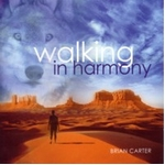 【Walking In Harmony CD】ヒーリング音楽NEW WORLD
