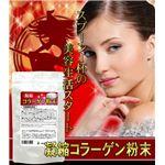 栄養補助食品 凝縮コラーゲン粉末 90g 【3袋セット】の詳細ページへ