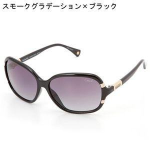 COACH(コーチ) サングラス S612-001 SIENNA-BLACK/スモークグラデーション×ブラック