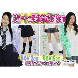Teens Ever(ティーンズエバー) プリーツスカート M チェック(ネイビー×白×黄色)