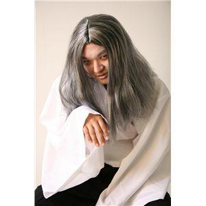 THEカツラ ロン毛(白髪) 2個セット