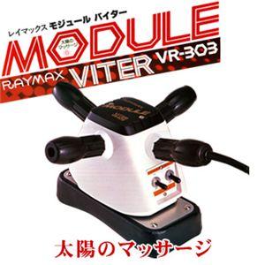 RAYMAX(レイマックス) モジュールバイター VR-303