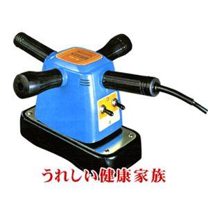 RAYMAX(レイマックス) バイター VR-76