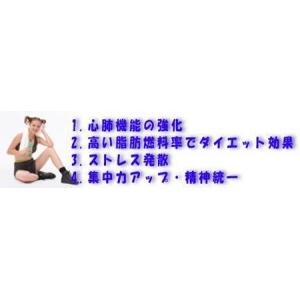 健康吹き矢 (スポーツ吹矢)