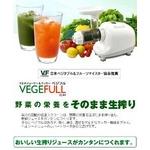 【マルチジューサー&クッカー】ベジフル(VEGEFULL) - ZJ-B1