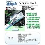 【医薬部外品】 ソラデーメイト 60g【2個セット】