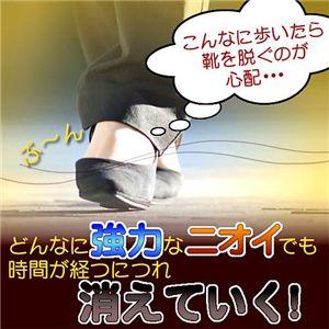 ドクターメルのシューリフレッシャー【2本組】