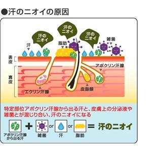 デオドラントクリーム メンズラヴィリン フォーアンダーアーム 12.5g【医薬部外品】