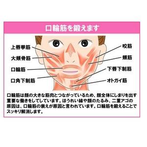 表情筋 トレーニング 『フェイシャルリフト アトワンス』 YMO-74 (小顔グッズ)