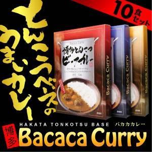 バカカカレー10食セット(ビーフ4、ポーク3、チキン3、計10食) | うまい問屋