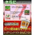美脚専用サプリメント『レッグパニックSOS』【3個セット】