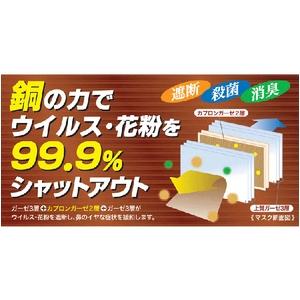 【訳あり】花粉症・新型インフルエンザ対策にも!カプロンマスク3枚セット