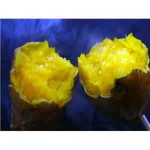 ☆売り切れ必至☆幻の蜜芋・種子島あんのう芋2種セット 5kg(紅芋・黄金芋)