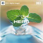 写真素材 DAJ063 HERB 【ハーブ】