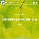 GREEN LEAVES 03            【フレッシュな新緑イメージ 03】