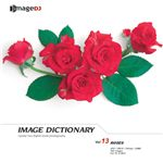 写真素材 imageDJ Image Dictionary Vol.13 薔薇
