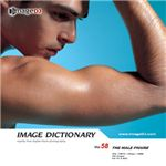 写真素材 imageDJ Image Dictionary Vol.58 男性の体