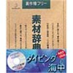 写真素材 素材辞典Vol.28 ダイビング 海中