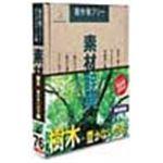 写真素材 素材辞典Vol.76 樹木 豊かないのち