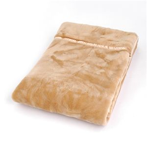 TASTEX HOT ぬくぬく温感加工 毛布&敷きパットセット シングル ベージュ