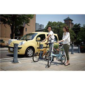 RENAULT(ルノー) 折り畳み自転車 18インチ FDB186 ミントブルー 【フォールディングバイク】