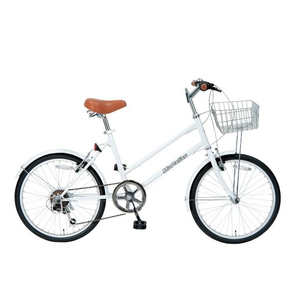 S-サイクル20型6段ギア