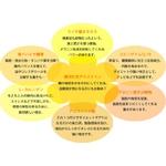 ピュアカットプレミアムWビューティー(梅)