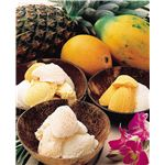 グルメトロピカアイスクリーム5種セット