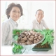健康診断結果の開き直りは最悪の原因に!効率よく健康生活をサポートする本格健康食品姫マツタケ 写真2