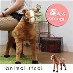 ぬいぐるみチェア/人形型椅子 【馬型】 幅23cm 着座可 〔おもちゃ リビング 子供部屋〕の詳細ページへ