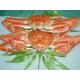 豪華!北海3大蟹セット 写真3
