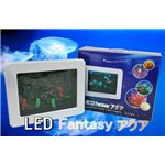 NEW LED Fantasy アクア