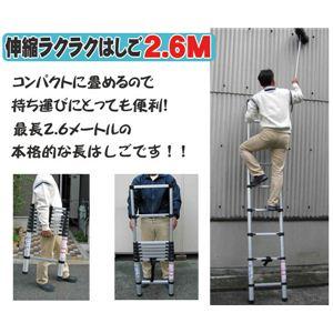 各段毎伸縮可能!! 伸縮ラクラクはしご2.6M AMT-02