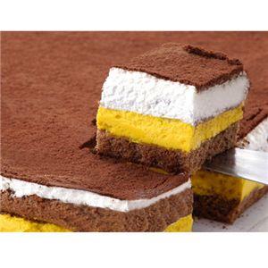 特大!!南瓜ティラミスケーキ