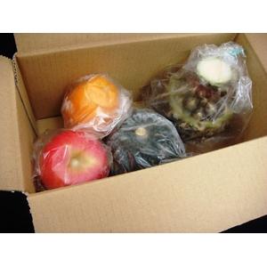 【お中元用 のし付(名入れ不可)】フルーツアイスシャーベット4種セット