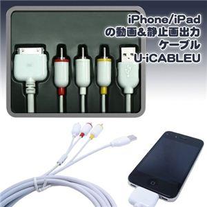 CAPLING(キャプリング) iPhone/iPadの動画&静止画出力ケーブル U-iCABLEU