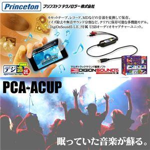 Princeton デジ造 音楽版 Windows&Mac【バーゲン通販】
