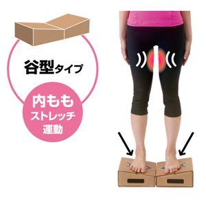 自宅で簡単昇降運動 毎日動くん台!