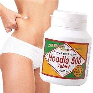 フーディア500