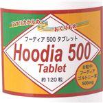 フーディア500〜簡単カロリーコントロールダイエット〜