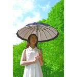 晴雨兼用日傘 soyo風 ブラック